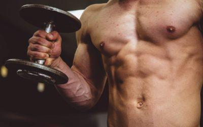 Muscle gain nutrition