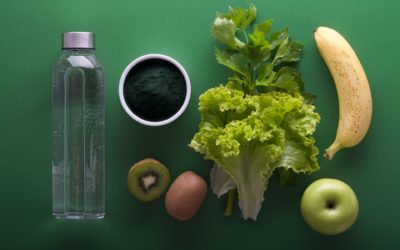 Principles of fractional nutrition