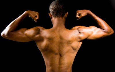 Best products for fitness nutrition and muscles